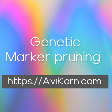 Pruning genetic markers based on their physical distance and linkage
